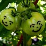 Felder Rushing's Slow Gardening