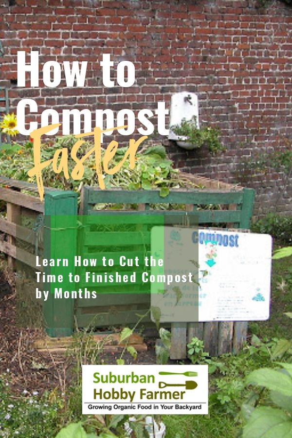 How to Compost Faster