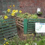 Composting Grass